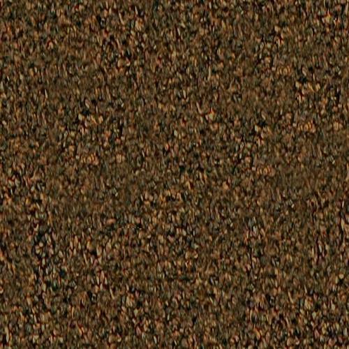 SECTOR 8185 Brown Sugar
