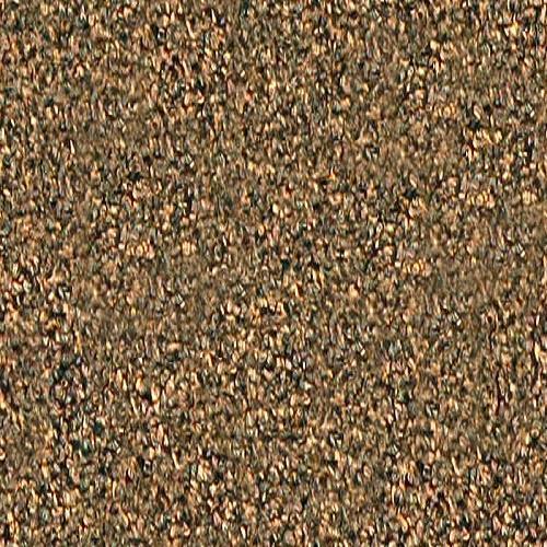 SECTOR 8188 Nutmeg