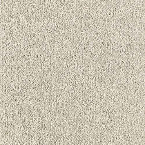 Stingray Parchment 3669