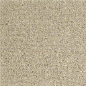 Carpet Academy SFI-ACADEMY Method