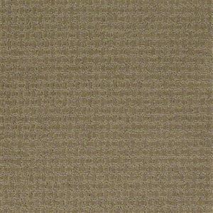 Carpet Academy SFI-ACADEMY Formula
