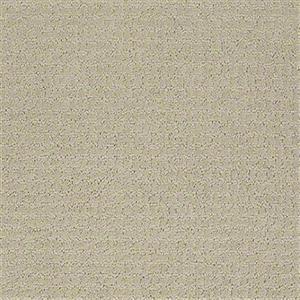 Carpet Academy SFI-ACADEMY Theory