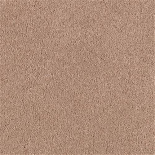 SWEETS Velvet Brown 823
