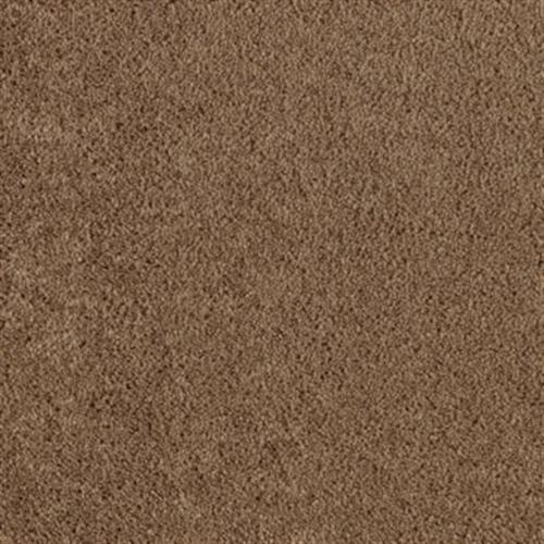 Stars Mesquite 878