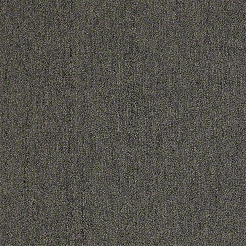 Windows 26 Taupe Dust 49715