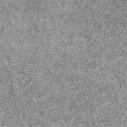 Aspen Classic Grey Goose 4856