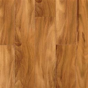 Laminate Gloss PARGLOBIR Birch