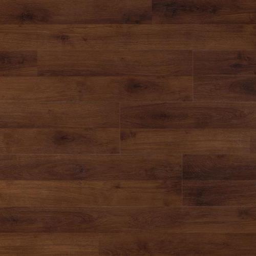 Hannover Oak