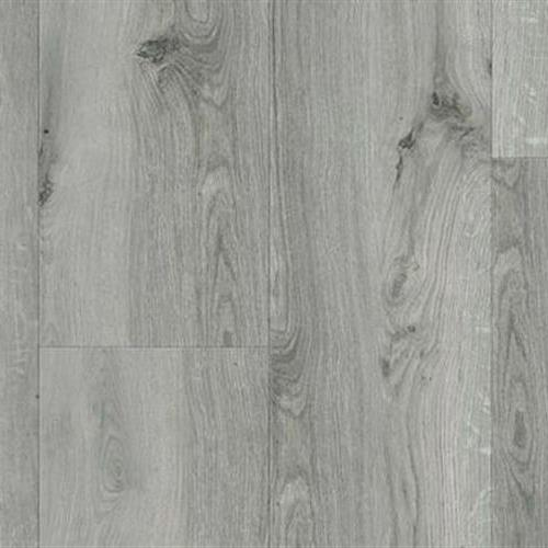 Hydrana Gyant Light Grey