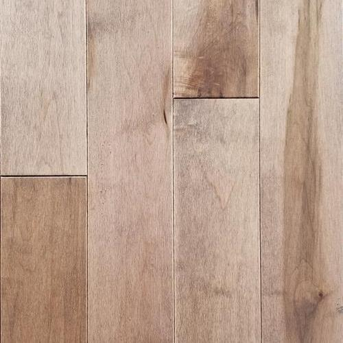 Hardwood BSL Character Maple Sirocco  main image