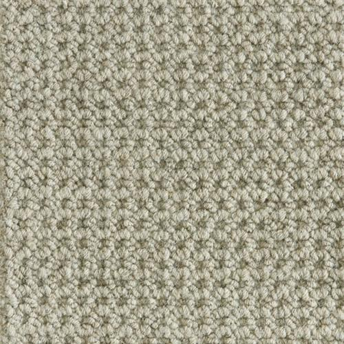 Colony Shadow