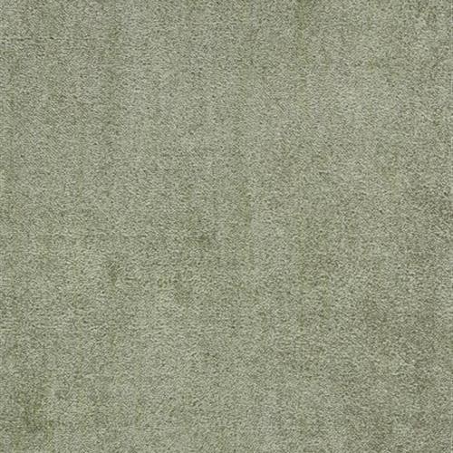 Azalea Olive AZA-23