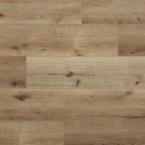 Great Oregon Oak Water Oak