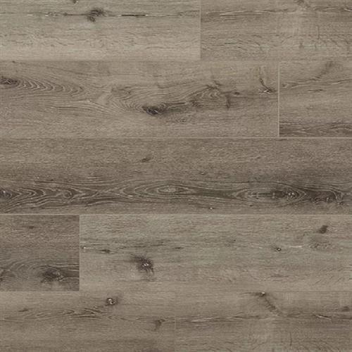 Great Oregon Oak Japanese Oak