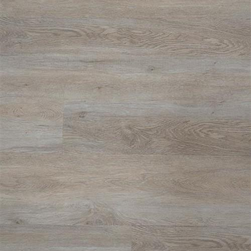 1120 KFI Collection Taupe