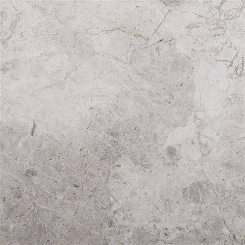 Marble Platinum