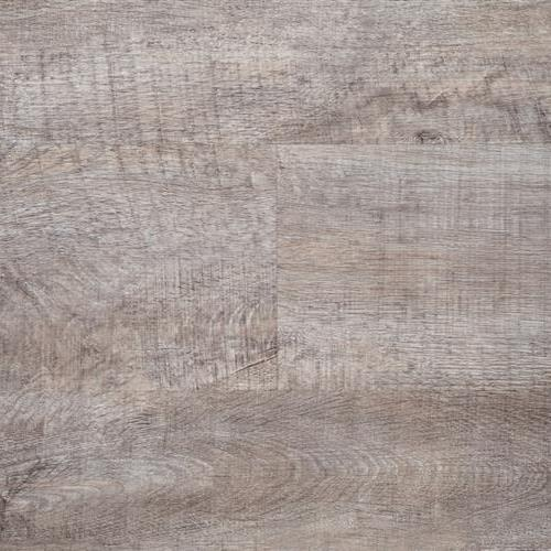 Essentials Collection Snowy Pine