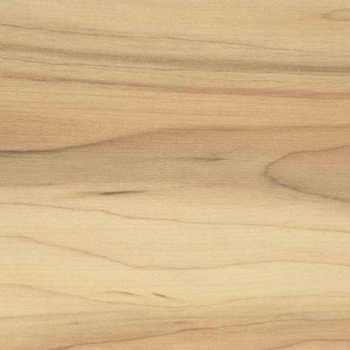 Everclick Camedo Maple