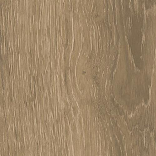 Rainforest Taupe