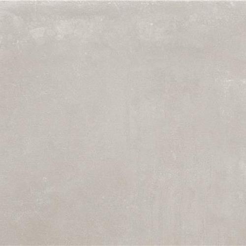 Camus Grey