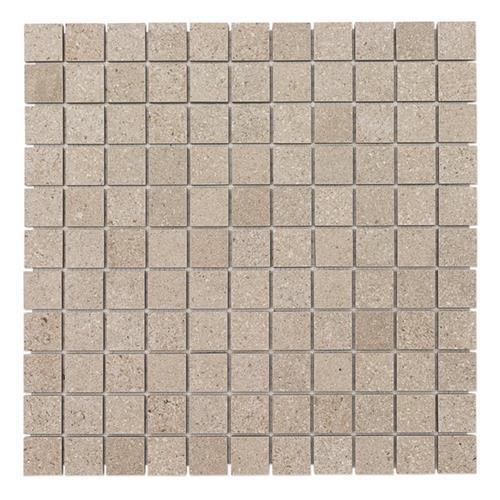Opificio Delle Pietre Lipica 2X2 Mosaic