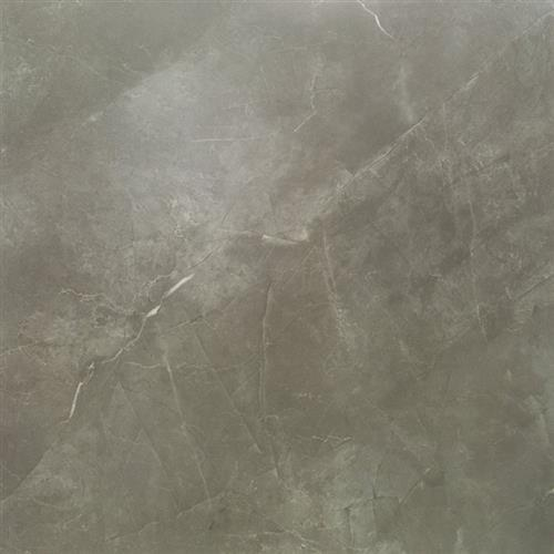 Pietra Tech Moon Gray Natural 24X24