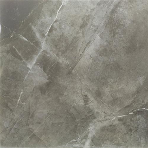 Pietra Tech Moon Gray Polished 24X24