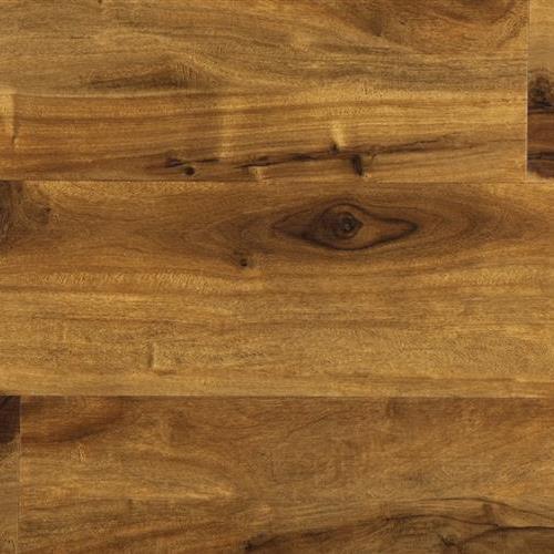 Means Plank Algonas