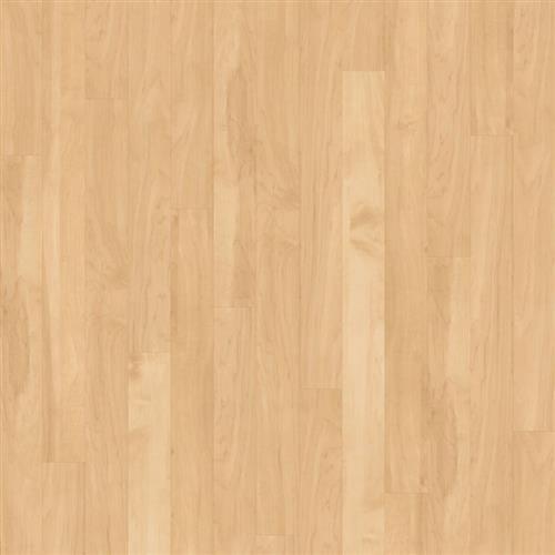 Da Vinci - Wood Collection Canadian Maple RP61