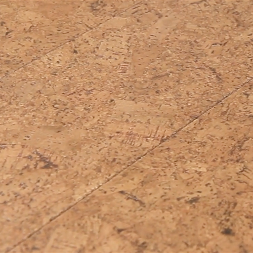 Greenclaimed Cork Flooring
