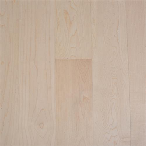 Contractor's Choice in Maple - Hardwood by The Garrison Collection