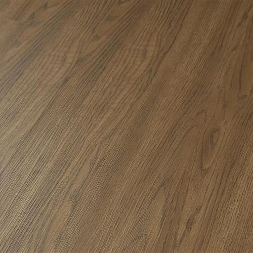 Wilmington Series Buckskin Oak