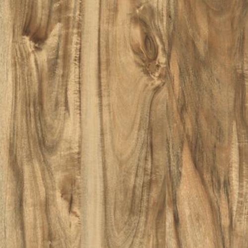 Cammeray Natural Acacia