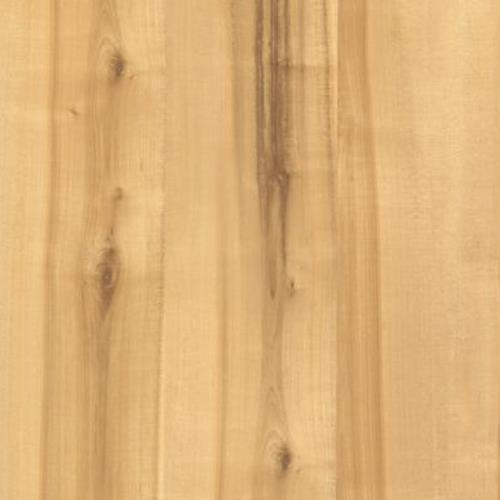 Cammeray Natural Spalted Maple