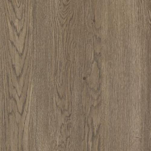 Cammeray Truffle Oak
