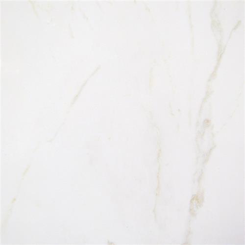 Carrara Collection Blanco 12X12