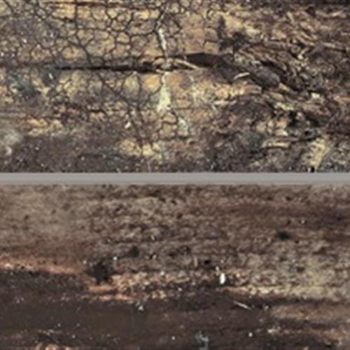 Eko Wood Collection Wenge 6X36