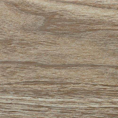 Cedar Collection Caramel - 6X24
