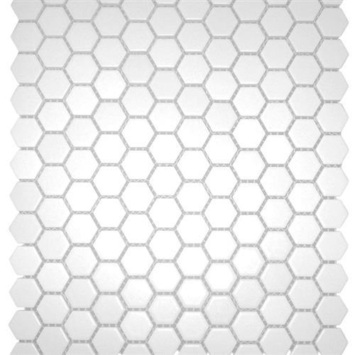 Chesapeake Mosaics White Hexagon 1X1