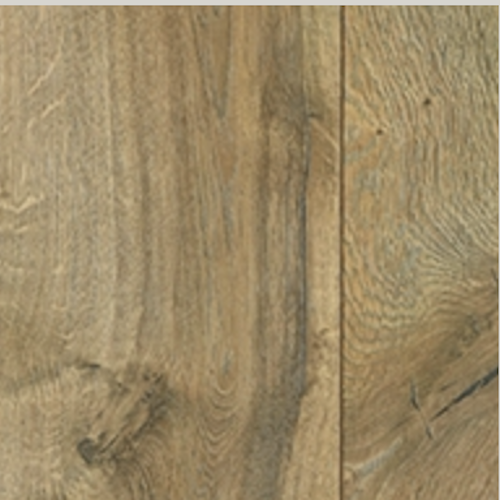 All American Century Oak