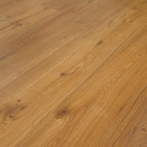 Aurora Oak