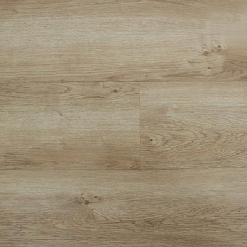 Multicore Fawn Oak