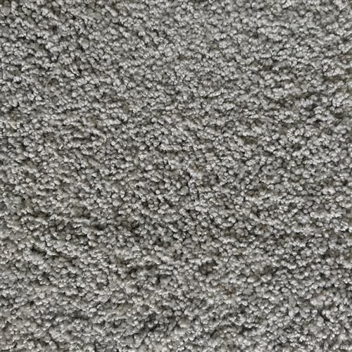 In-Stock Carpet By Shaw Sheer Silver
