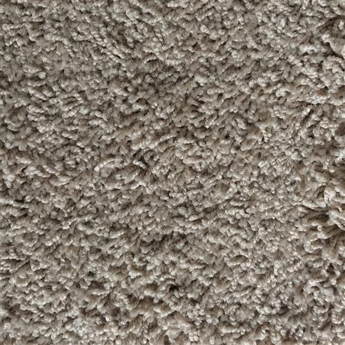 In-Stock Carpet By Stainmaster Dandy Beige
