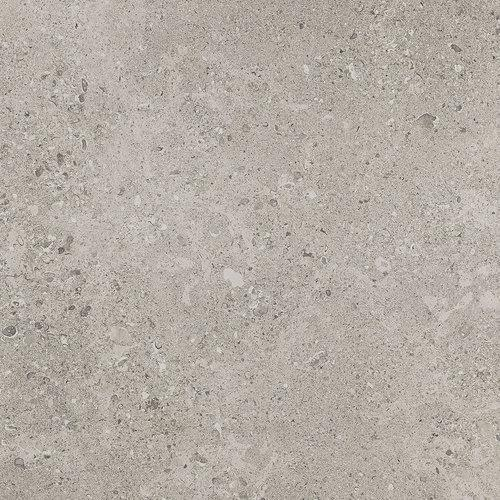 Dignitary Superior Taupe 12X24 DR08