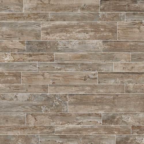 Season Wood in Orchard Grey 24x48 - Tile by Daltile