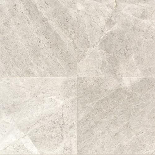 Limestone Arctic Gray - 12X12 Polished