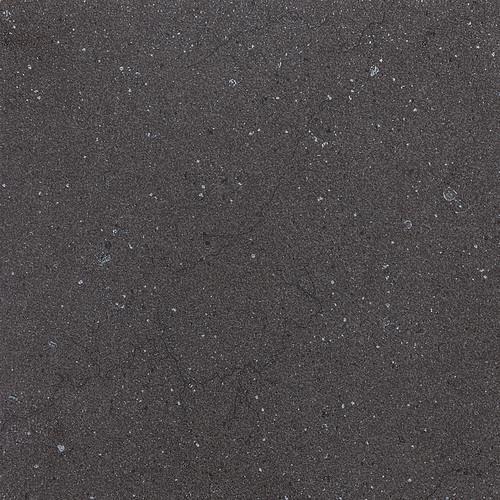 Torreon Coal 12X24 TN99