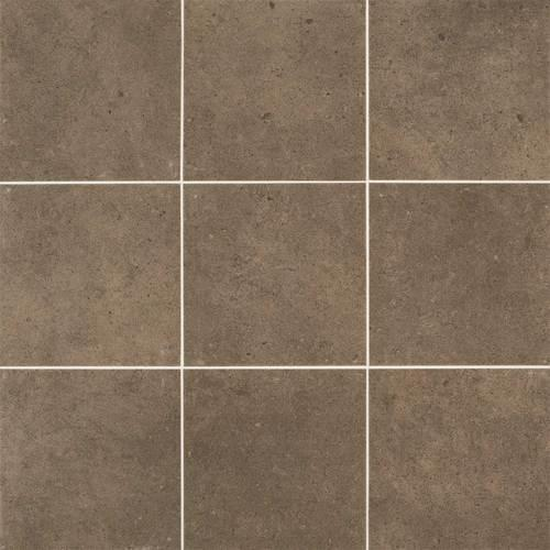 Industrial Park Chestnut Brown 12X12 IP08