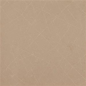 NaturalStone Classico 5134-20H UrbanSafari-Honed75